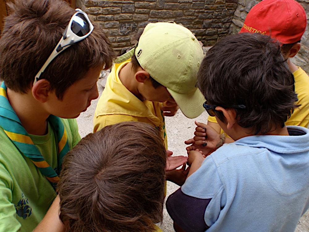Campaments dEstiu 2010 a la Mola dAmunt - campamentsestiu376.jpg