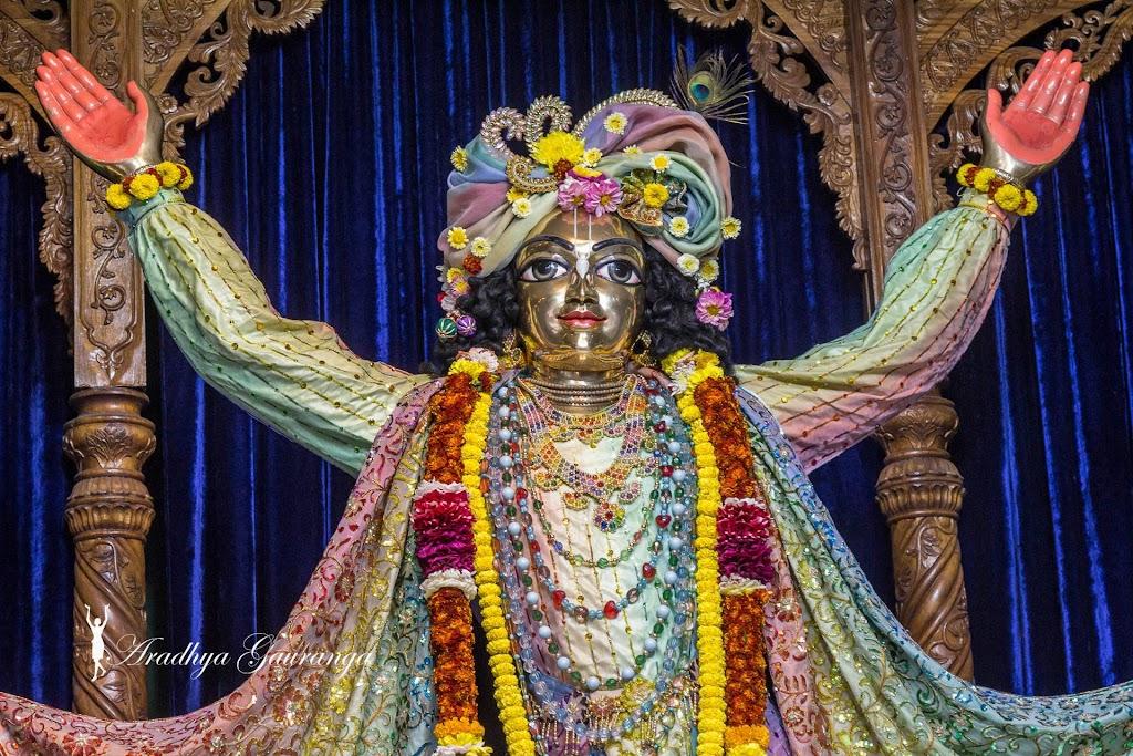 ISKCON Mayapur Deity Darshan 20 Jan 2017 (11)