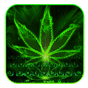 Green neon weed Keyboard APK