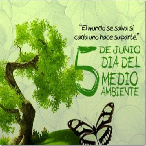 feliz-dia-del-medio-ambiente-en-el-mundo-51