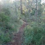 20120429-La senda de los Picayos