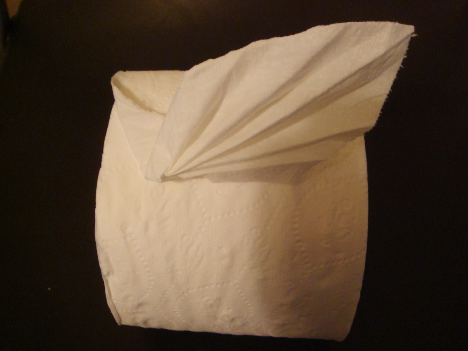 toilet paper origami leaf instructions amypayroo