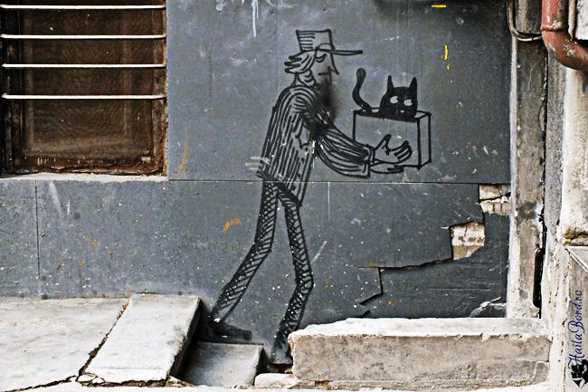 graffiti pisica bucuresti
