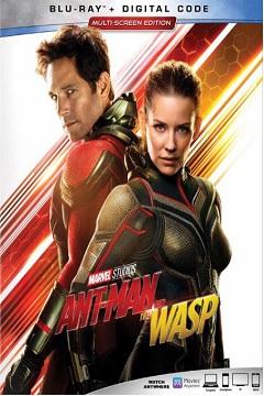 Ant-Man ve Wasp - 2018 BluRay 1080p DuaL x264 DTS 5.1 indir