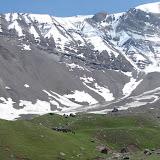 Troupeau de yaks au-dessus de Muk, 3400 m, vallée de Muksu. 10 juillet 2007. Photo : Emmanuel Zinszner