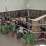 Aalon kirjastoa.JPG