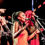 aFESTIVALS 2018_DE-AfrikaTage_04_bands_ALBOROSIE & SHENGEN CLAN_web0322.jpg