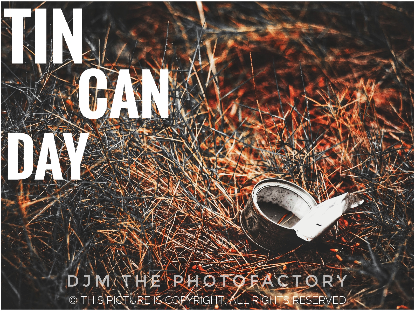 history of national tin can day 2020 wishes images status.