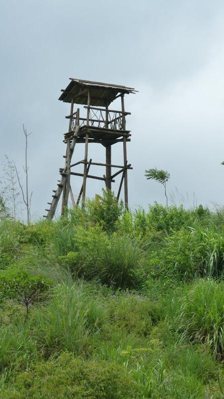 TAIWAN A cote de Luoding, Yilan county - P1130544.JPG