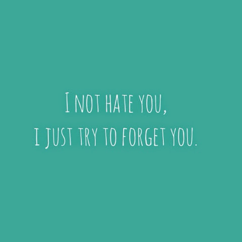 Quotes By Jaoui I Not Hate Just Try To Forget You