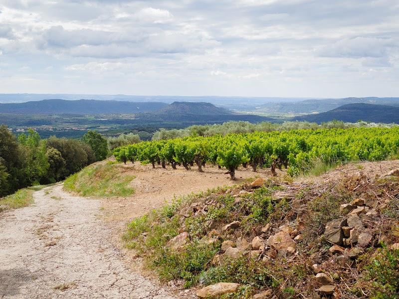 Wein & Berge
