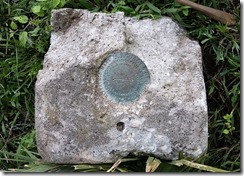 Paw Paw bench mark