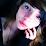 Emma Neve's profile photo