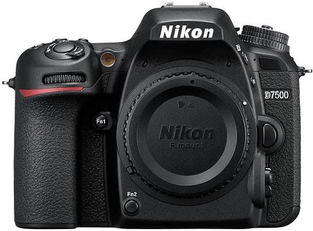 Yeni Başlayanlar İçin Makro Fotoğrafçılık İpuçları