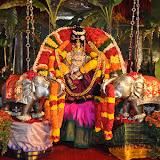 Navarathri Celebrations 2015