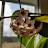 tknapp97 avatar image