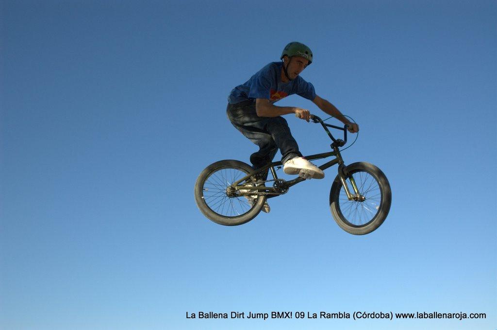 Ballena Dirt Jump BMX 2009 - BMX_09_0105.jpg