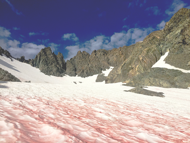 Hiking/Climbing Mount Ritter on the Inyo National Forest, Ansel Adams Wilderness, 28 August 2017. Approaching the middle of the Southeast Glacier and the chutes to the summit snowfield are visible to the right. 'Blood' colored snow is from algae. Temps in 60-70s. No wind. Photo: Paul Wade / USDA / Flickr