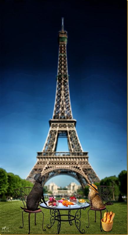 Matt & Mailda  Paris adventure(Final- Jenny ©Bell Fur Zoo) WM