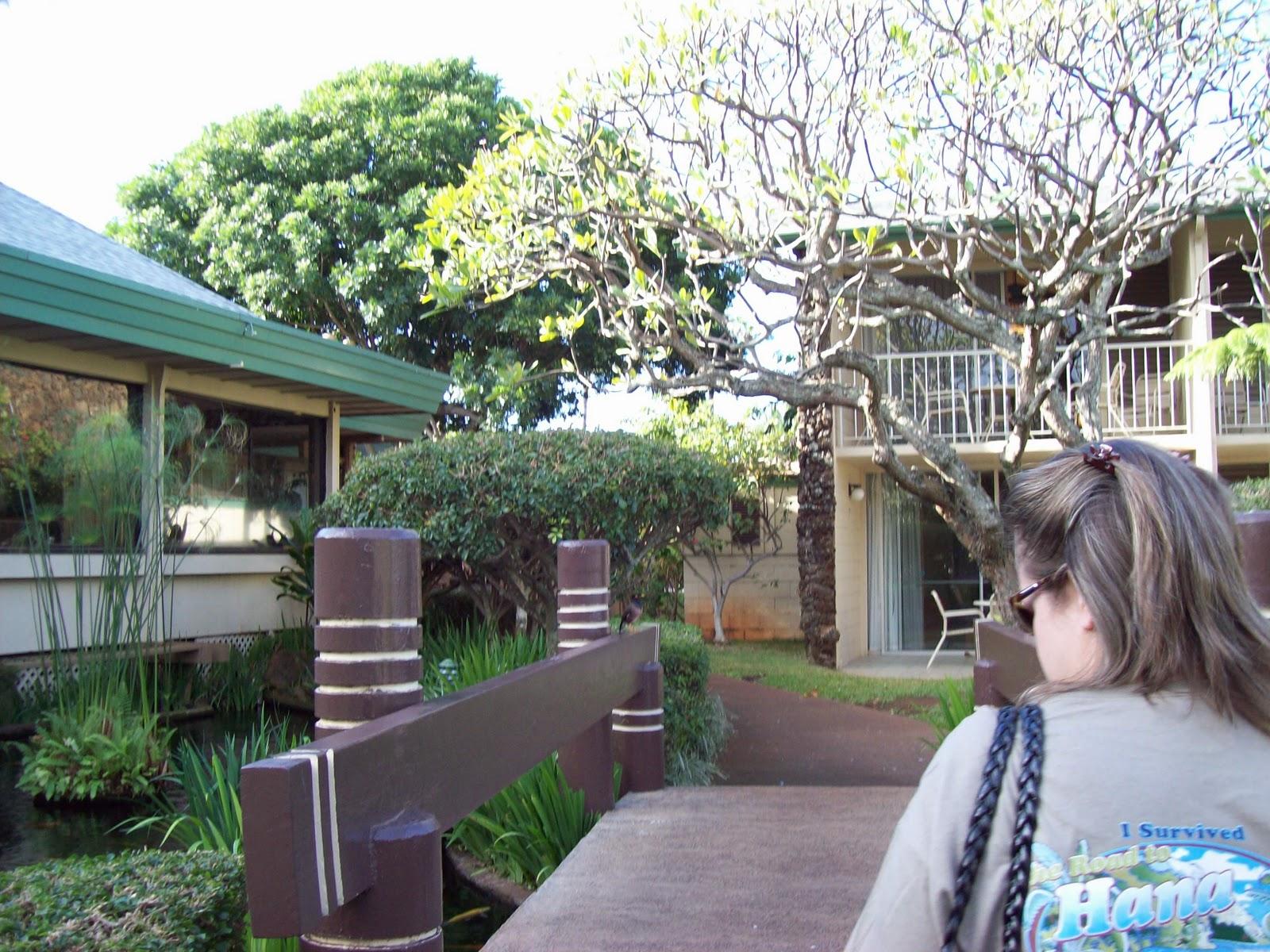 Hawaii Day 6 - 100_7580.JPG