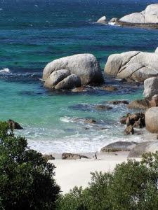 South African Beach