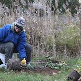 Hammo Fall Planting - Jim Murtagh - BC3G2540.jpg