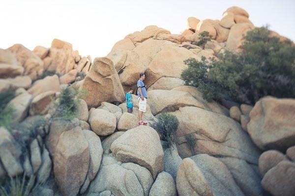 7-joshtree rocks