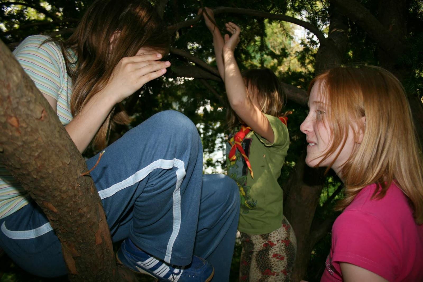 Dan tabornikov, Ilirska Bistrica 2007 - IMG_5858.jpg