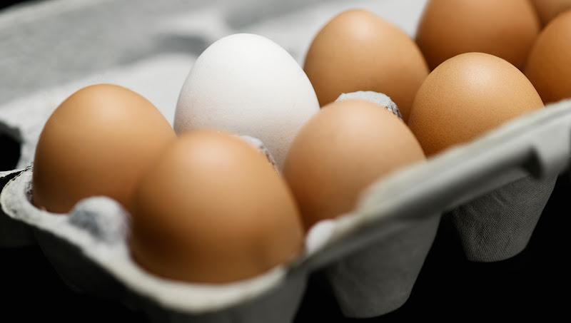 {focus_keyword} Telur Tak Boleh Dibasuh dan Disimpan Dalam Peti Sejuk eggs 15