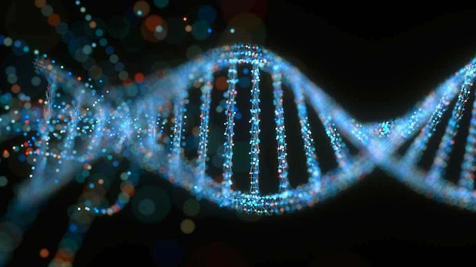 Why Is DNA Twisted?