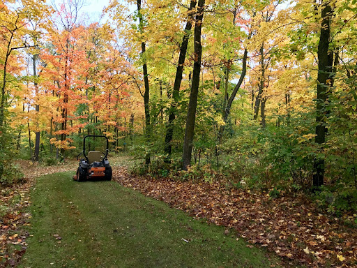 Clearing leaves off the Sukkerbusk ski trail. September 25th.