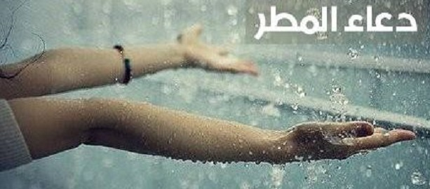 دعاء نزول المطر,دعاء المطر والرعد والبرق,دعاء المطر,دعاء المطر مستجاب,دعاء نزول المطر والرعد والبرق,دعاء المطر والرعد,نزول المطر,دعاء نزول المطر الشديد,دعاء البرق والرعد ونزول المطر,دعاء نزول المطر والبرد,المطر,الدعاء المستجاب,دعاء البرق,دعاء,دعاء سقوط المطر,الدعاء عند نزول المطر,دعاء الرعد,دعاء هطول المطر والرعد,دعاء المطر الشديد,دعاء نزول المطر والرعد والبرق وشدة الرياح,دعاء الرعد والبرق ونزول المطر,دعاء عند نزول المطر,دعاء البرق والرعد ونزول المطر دعاء