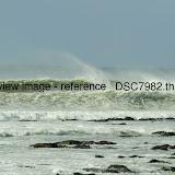 _DSC7982.thumb.jpg