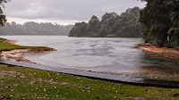 Trapped in downpour @ MacRitchie Reservoir.