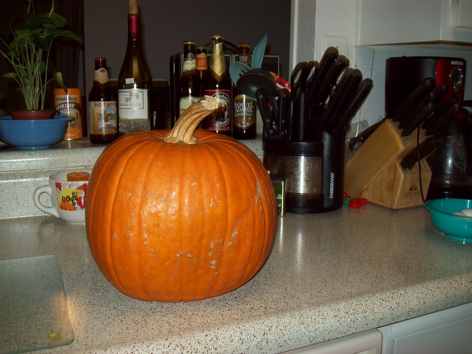 Pumpkin Pie - 101_0716.JPG
