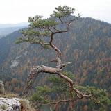 Pieniny - październik 2010