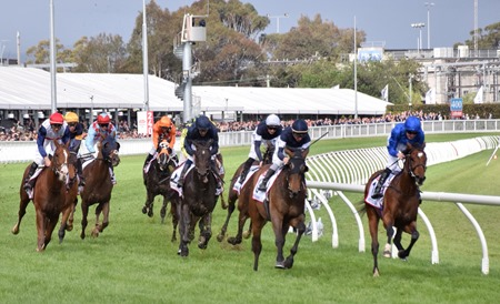 caulfield cup_finish 4