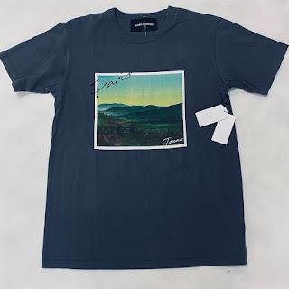 Bianca Chandon NEW T-Shirt Paris Texas  Gray
