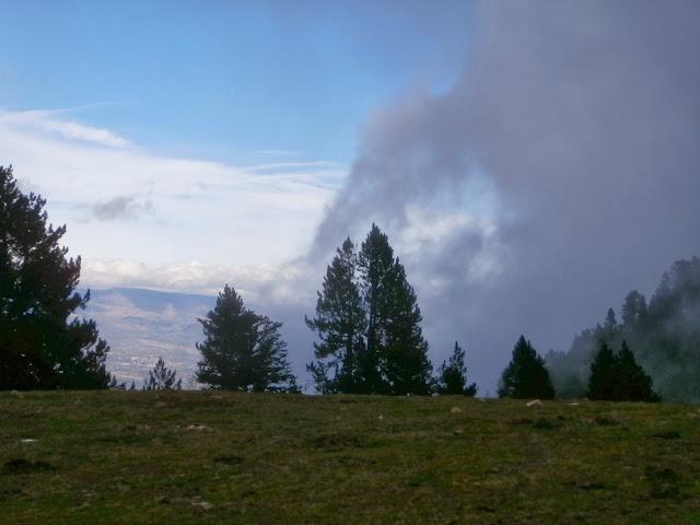 Niebla....