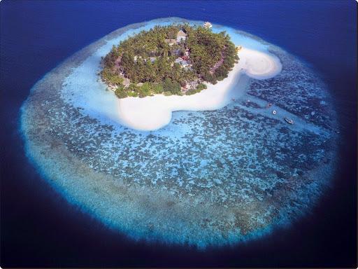 Aerial View of a Tropical Island, Maldives.jpg