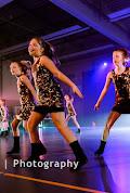 Han Balk Voorster Dansdag 2016-3631-2.jpg