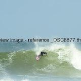 _DSC8877.thumb.jpg
