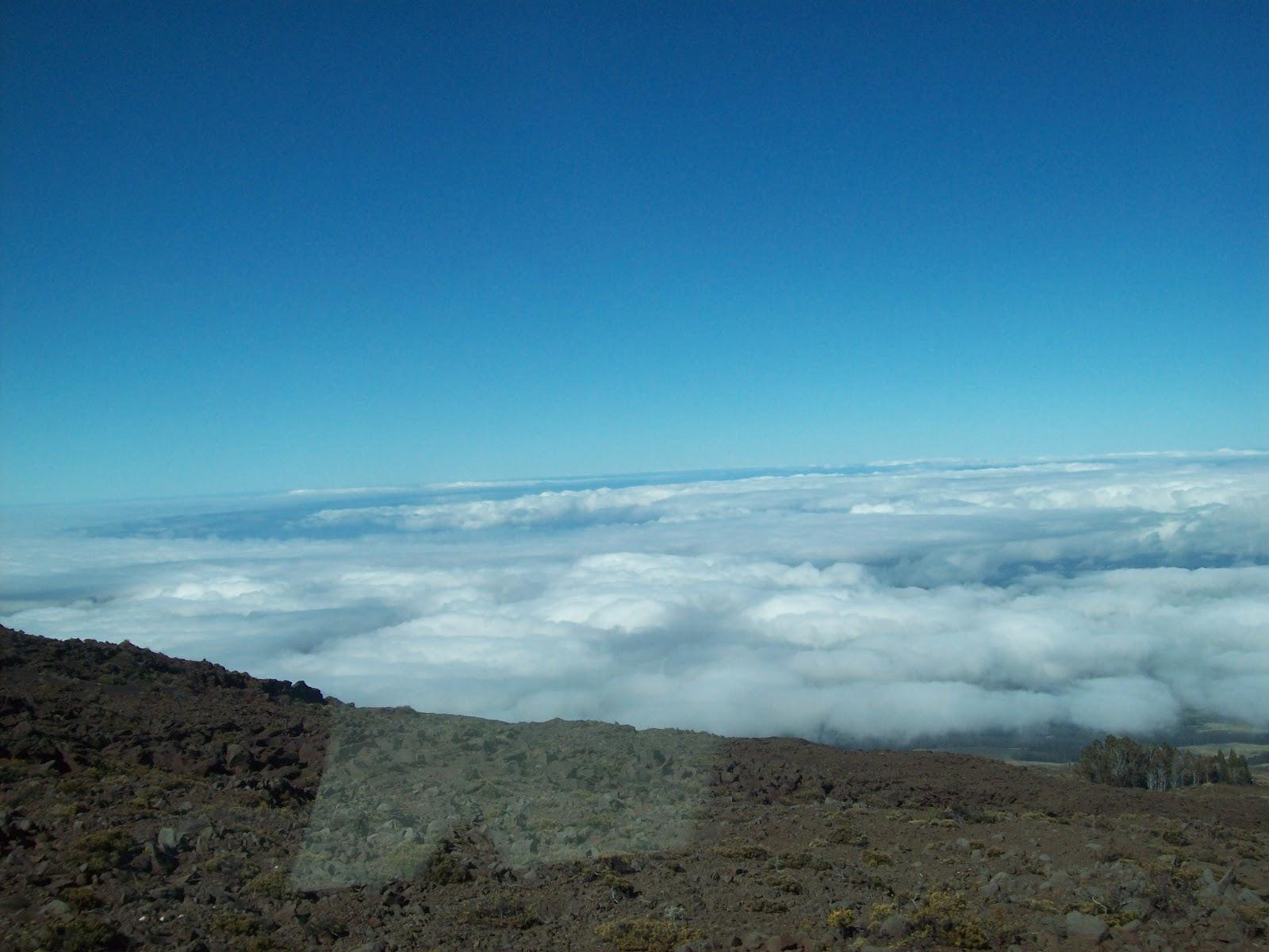 Hawaii Day 8 - 114_2074.JPG