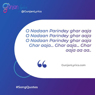 O Nadaan Parinde Song Lyrics,O Nadaan Parinde Song quotes
