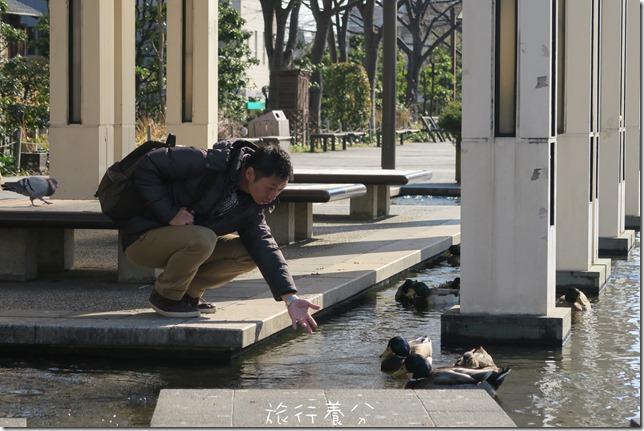四國德島 葫蘆島周遊船 新町川水際公園 (73)