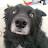 Gabe Tabor avatar image