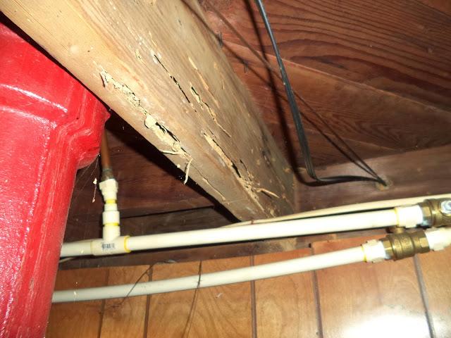 Interior - DSC01312.JPG
