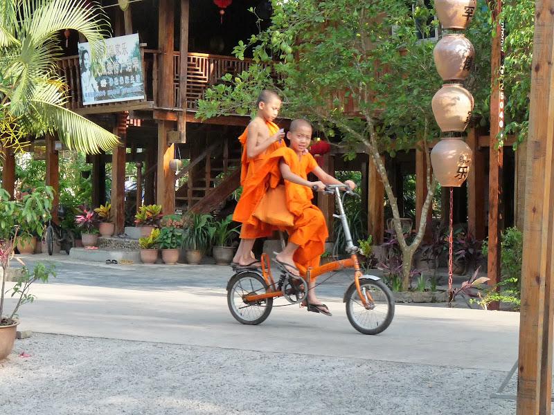 Chine . Yunnan..Galamba, Menglian Album A - Picture%2B129.jpg