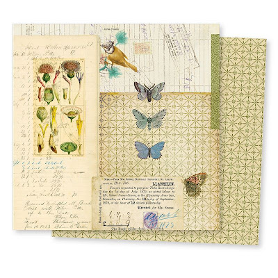 Conservatory Paper By 7Gypsies