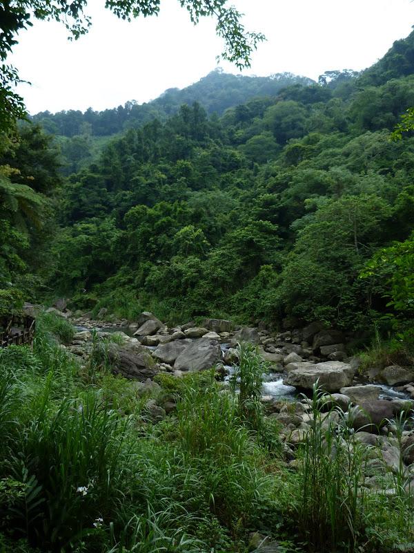 TAIWAN.Dans la région de Miaoli - P1080395.JPG